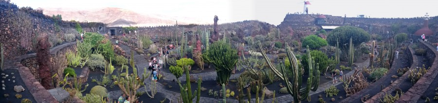 Jardín de Cactus, Lanzarote, Canary Islands