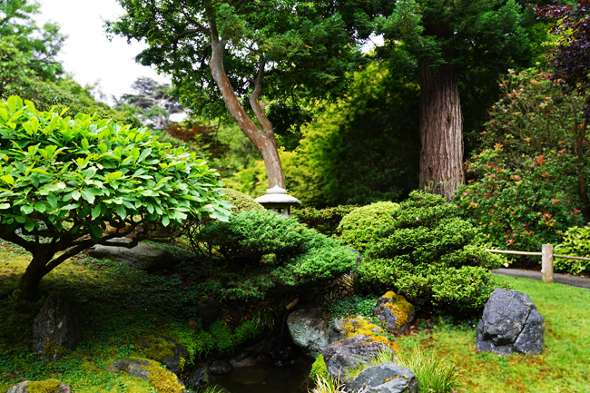 Japanese Garden, San Francisco
