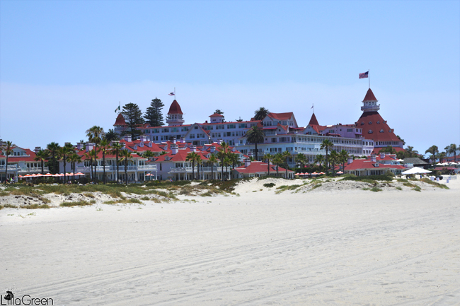 "The Real ""Golden Sands"" ~ Coronado"
