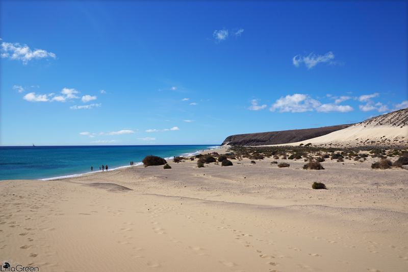 Beaches, Fuerteventura