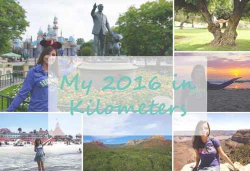My 2016 in Kilometers ~ One Time Around the Earth!