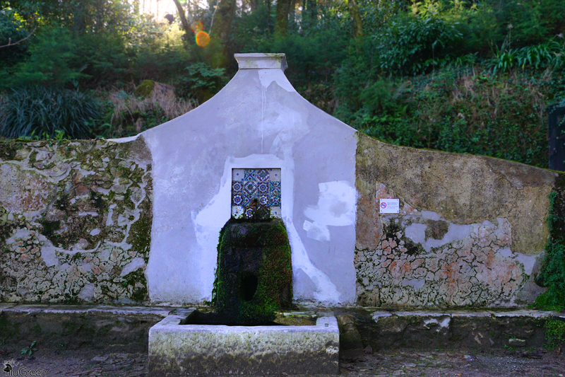 Spring of Water, SIntra