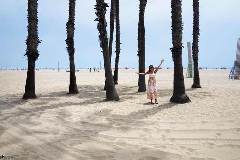 Venice Beach: The Best Of Los Angeles