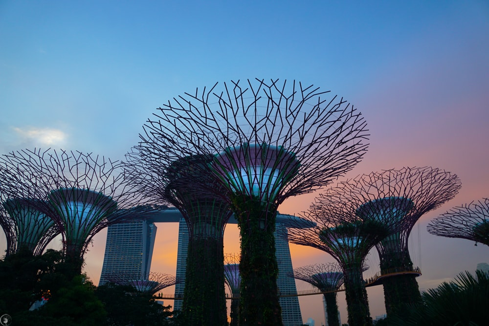 Gardens of The Bay, Singapore