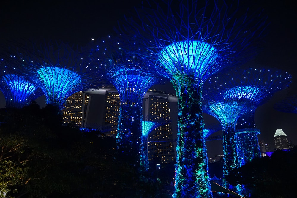 Supertrees light show, Gardens by the Bay
