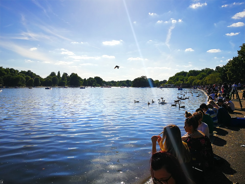 The Long Water, Hyde Park,