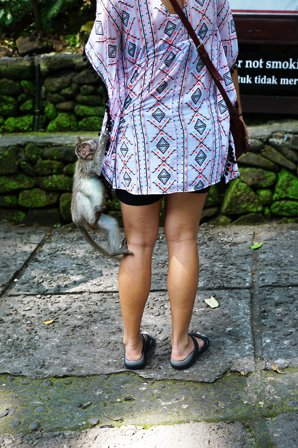 The Monkey Forest , Ubud