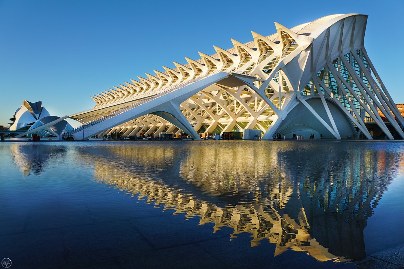 Museo De Las Ciencias Príncipe Felipe, City of Arts and Sciences