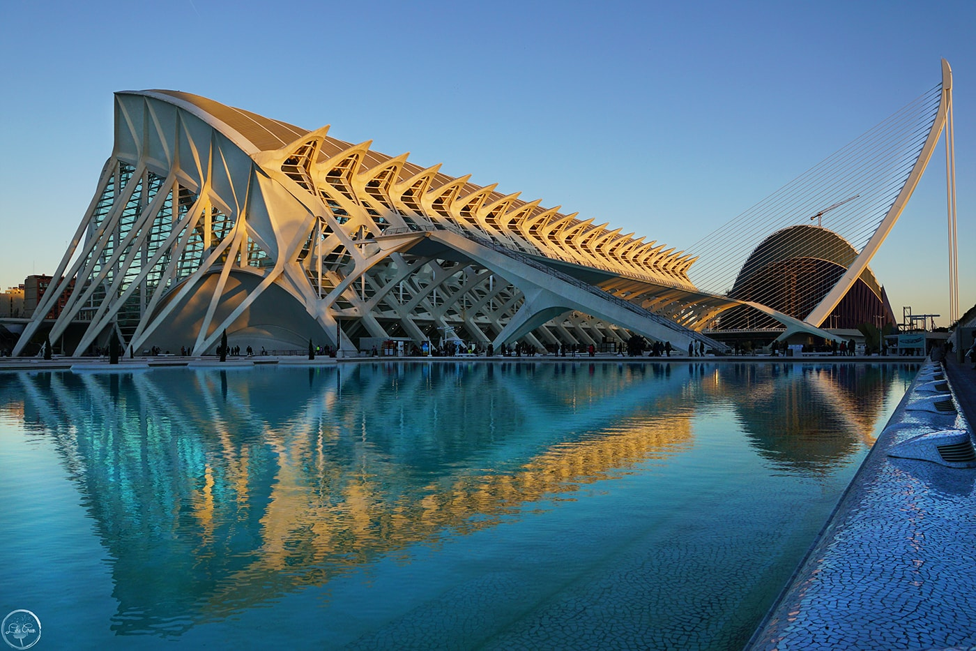 Museo De Las Ciencias Príncipe Felipe and Agora, City of Arts and Sciences