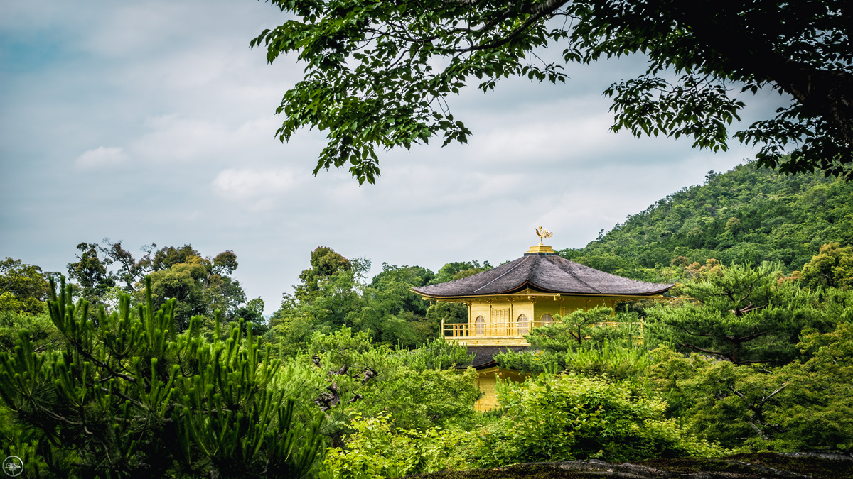 Kinkakuji Temple, The Golden Pavilion, Kyoto